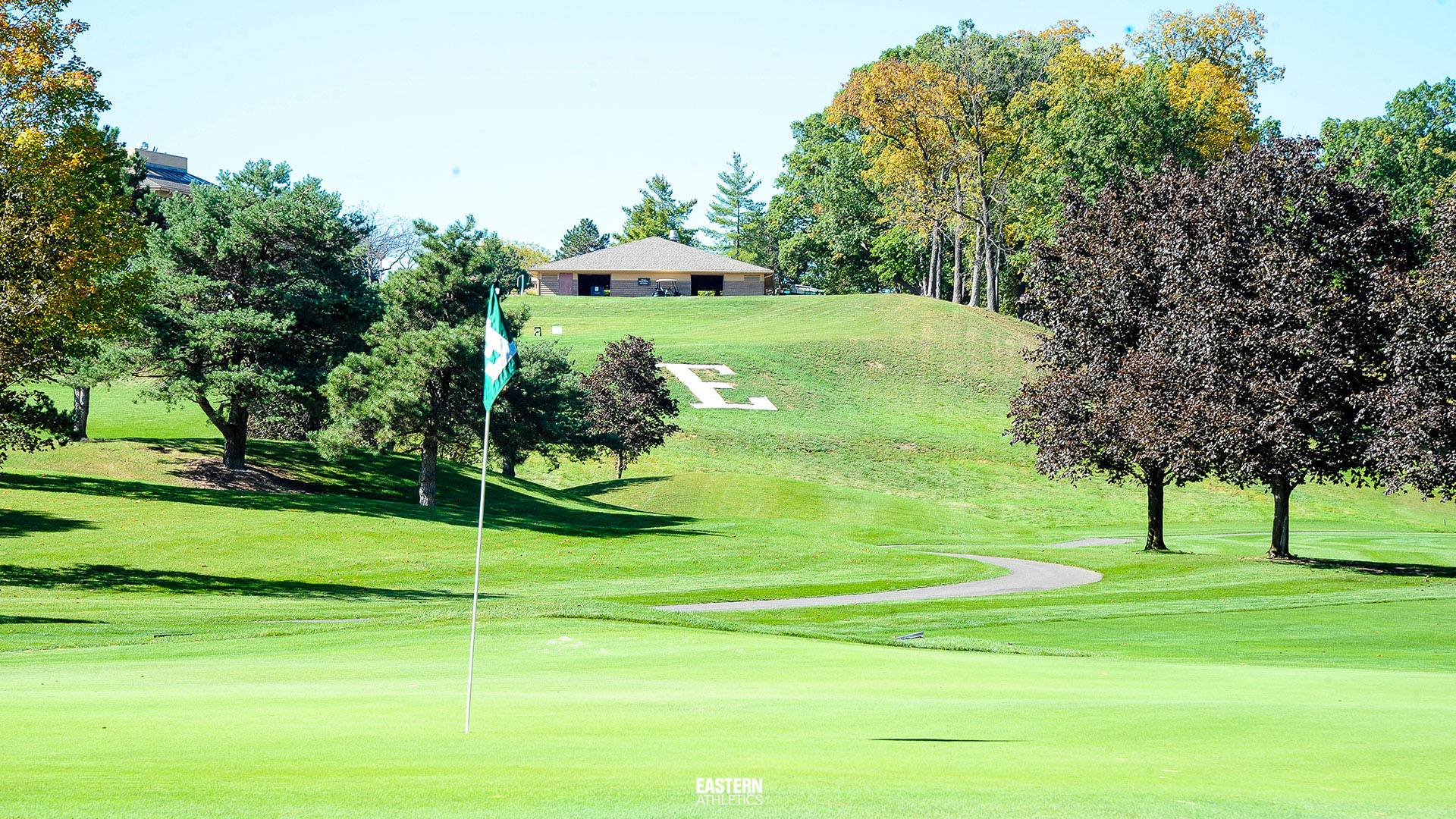 Zoom Background Download Golf Course
